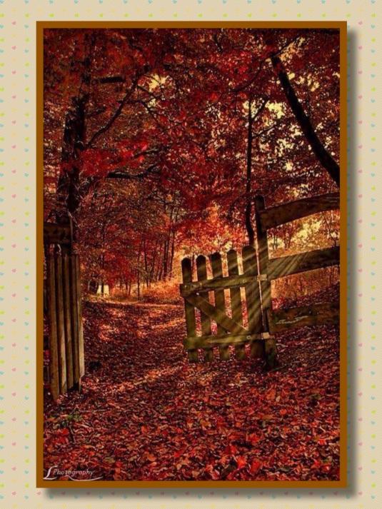 fall gate