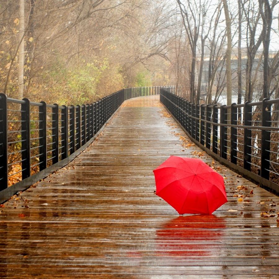 rainy-day-hd-wallpaper-1-6826